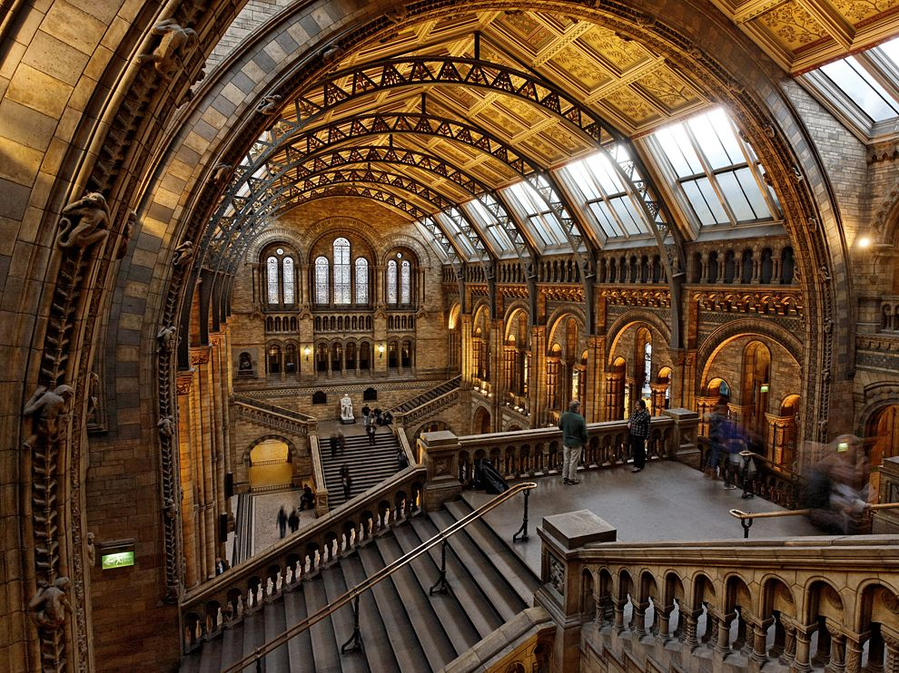 natural-history-museum_377273